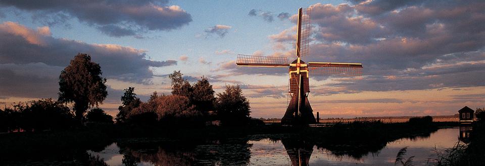 Olanda Mulino