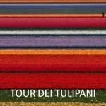 TOUR DEI TULIPANI